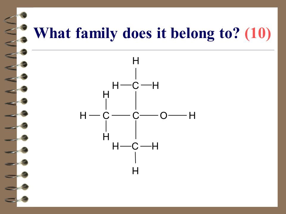What family does it belong to (10)