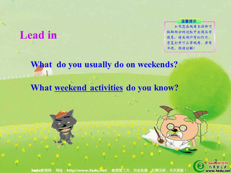 Lead in What do you usually do on weekends