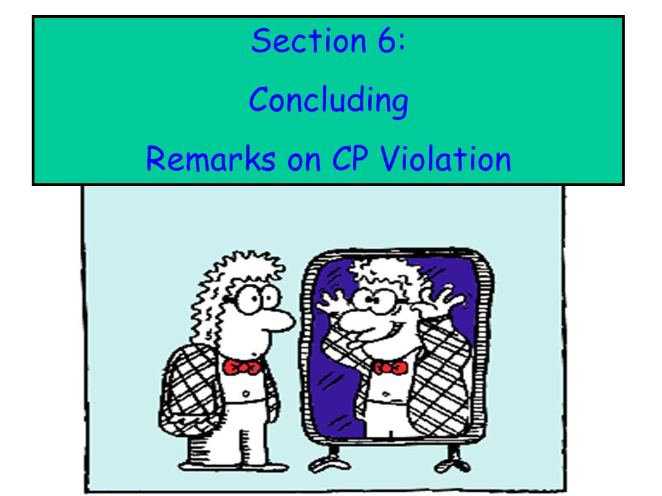 Remarks on CP Violation