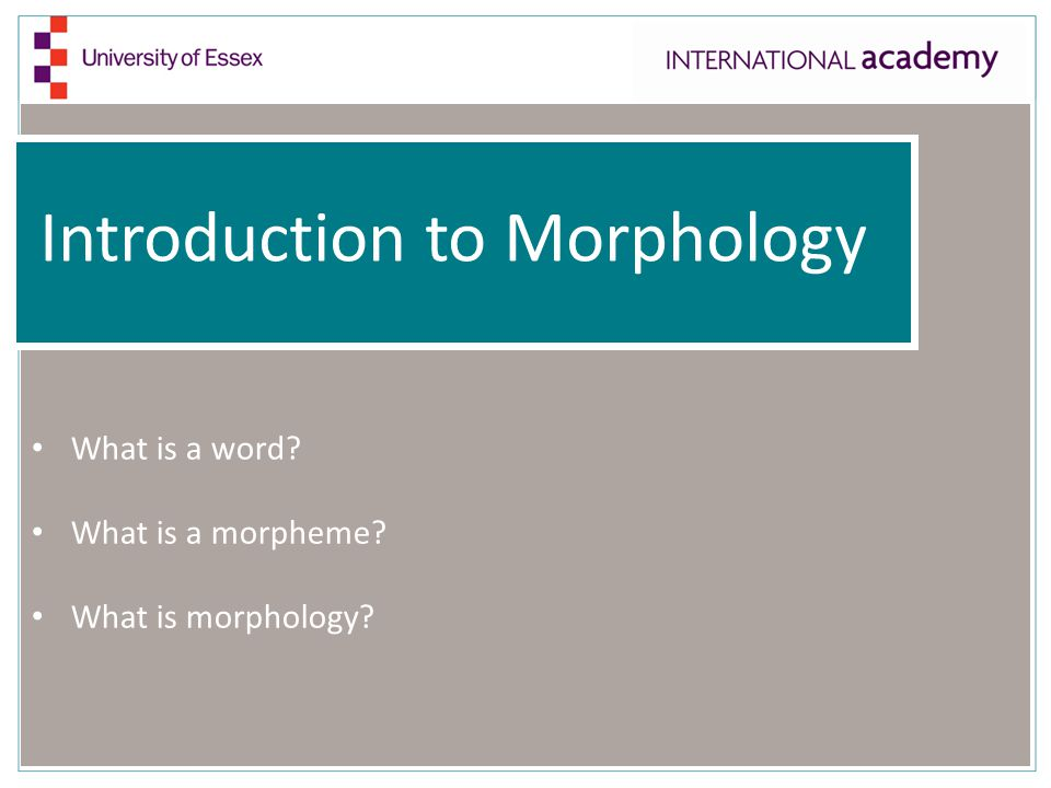 Introduction to Morphology