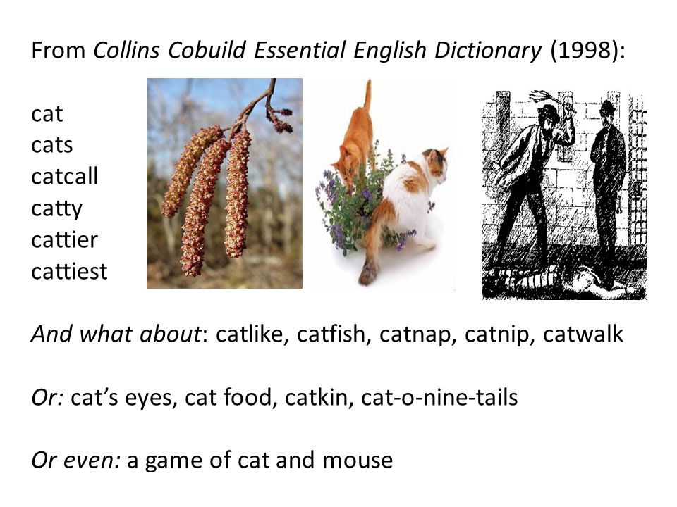 From Collins Cobuild Essential English Dictionary (1998):