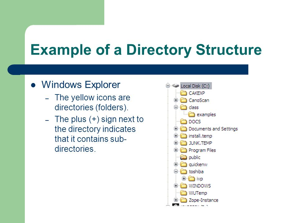 Example of a Directory Structure