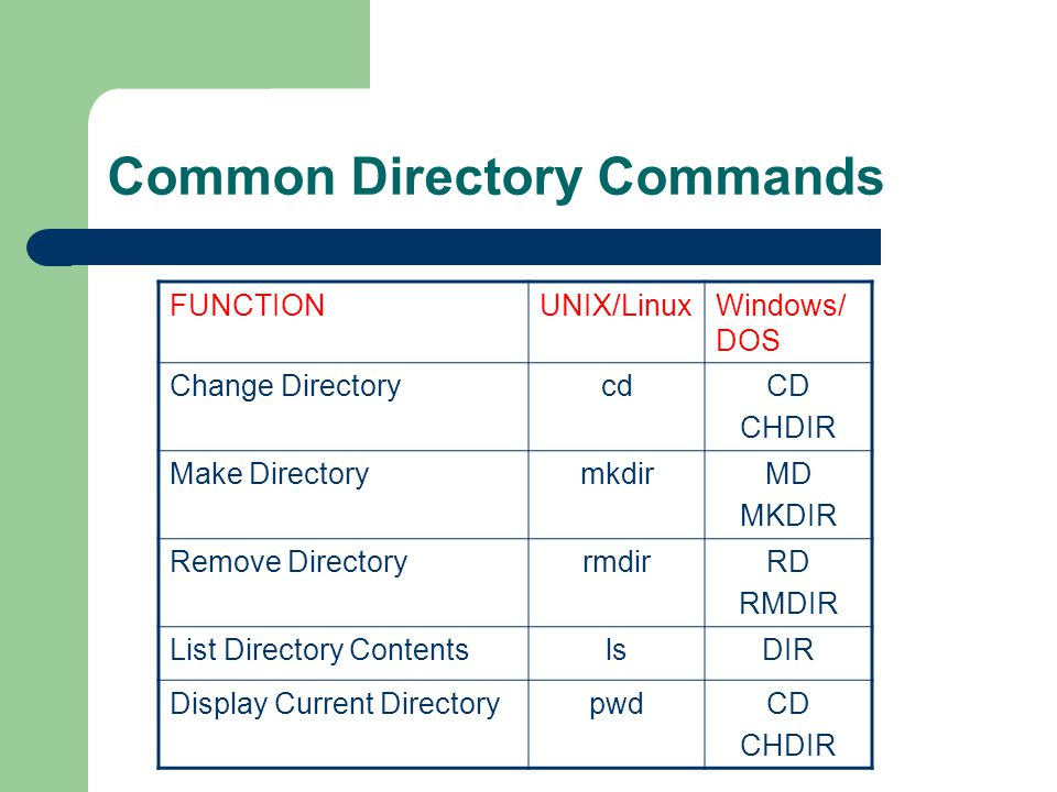 Common Directory Commands