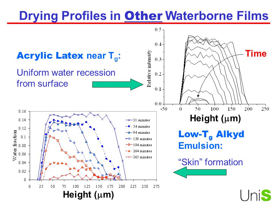 Drying Profiles in Other Waterborne Films