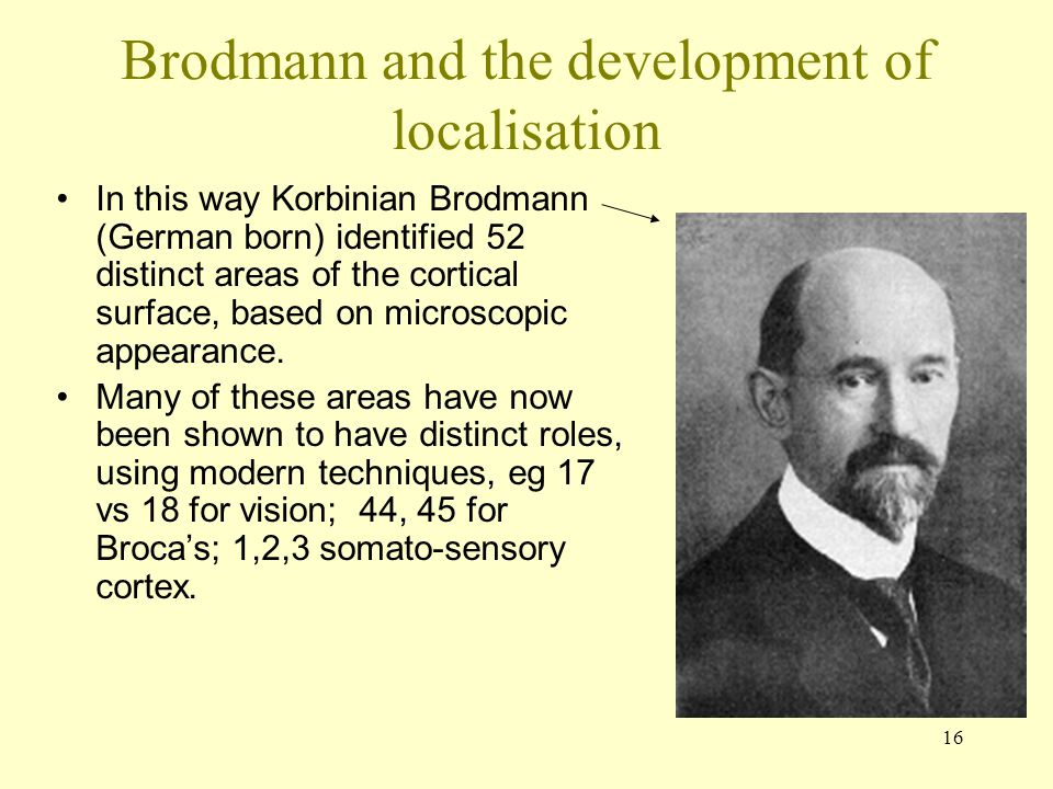 Brodmann and the development of localisation
