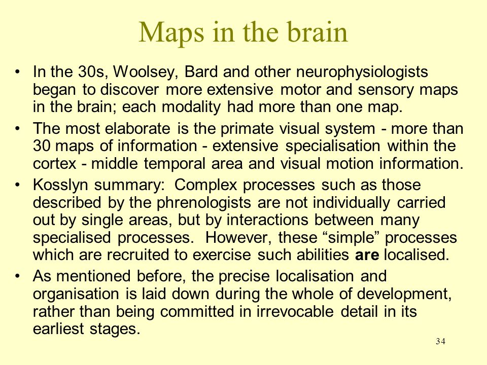Maps in the brain