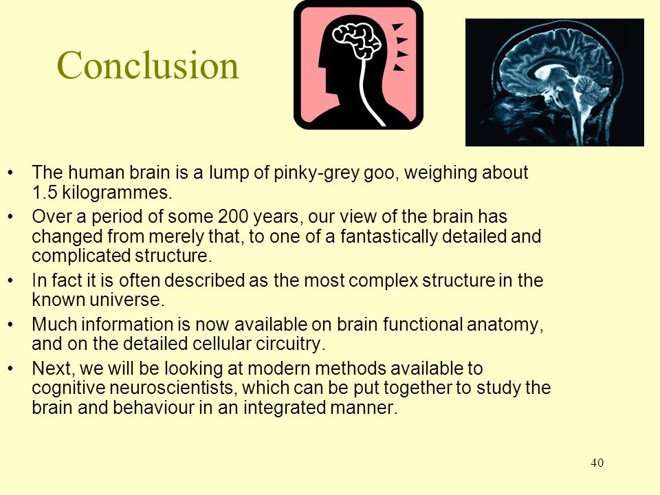 Conclusion The human brain is a lump of pinky-grey goo, weighing about 1.5 kilogrammes.