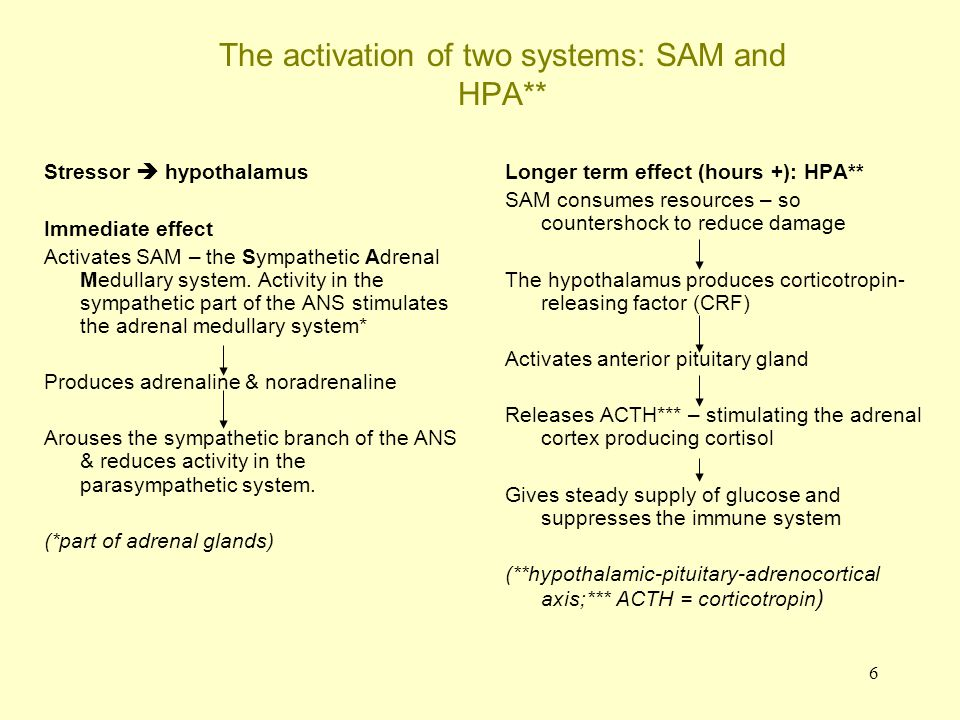 The activation of two systems: SAM and HPA**