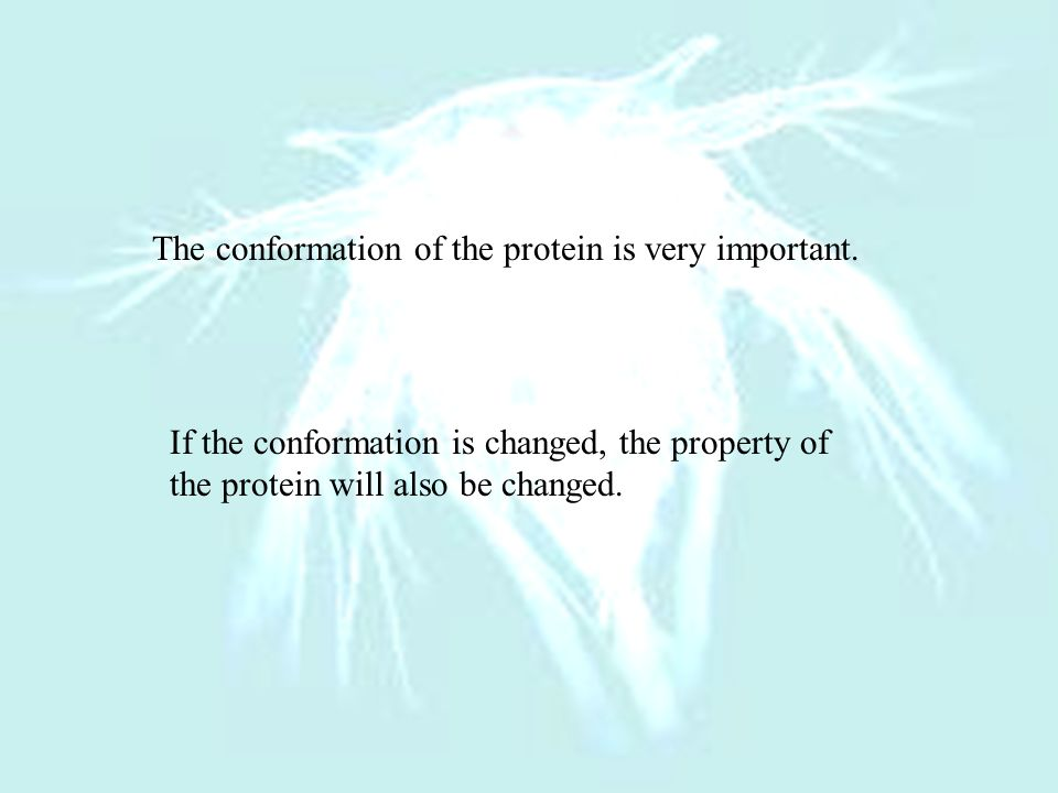 The conformation of the protein is very important.