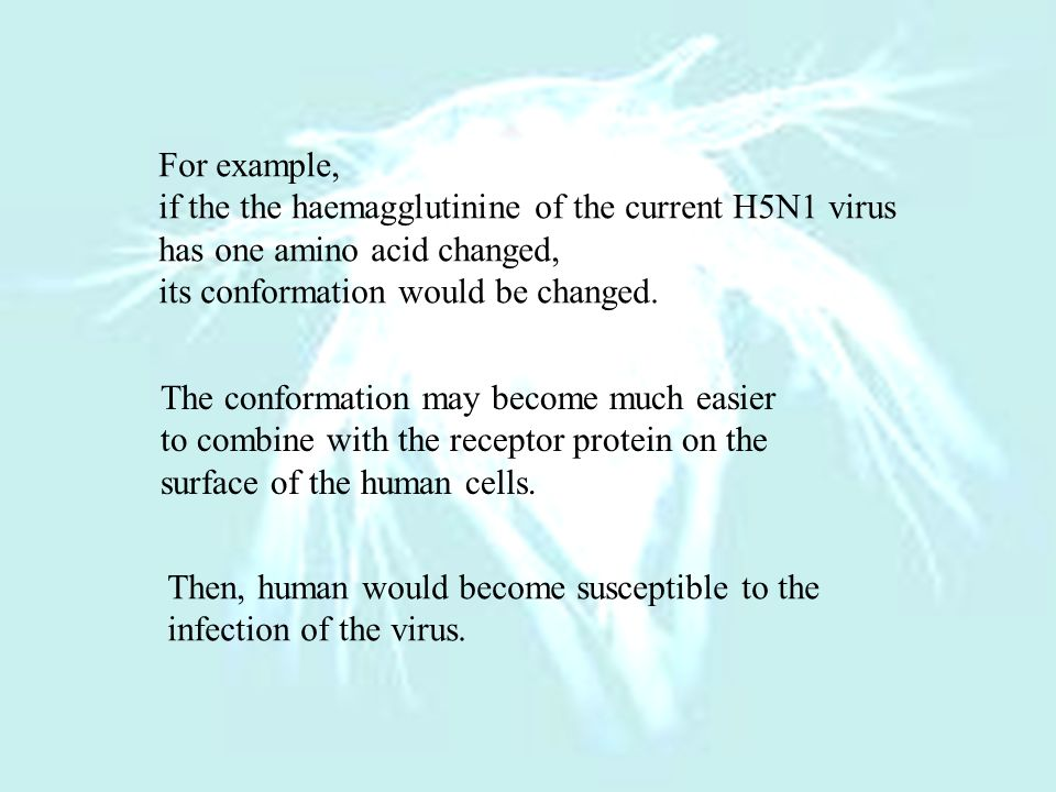 For example, if the the haemagglutinine of the current H5N1 virus. has one amino acid changed, its conformation would be changed.
