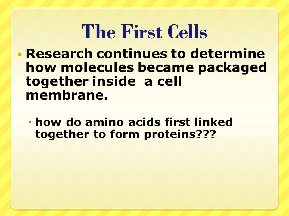 The First Cells Research continues to determine how molecules became packaged together inside a cell membrane.