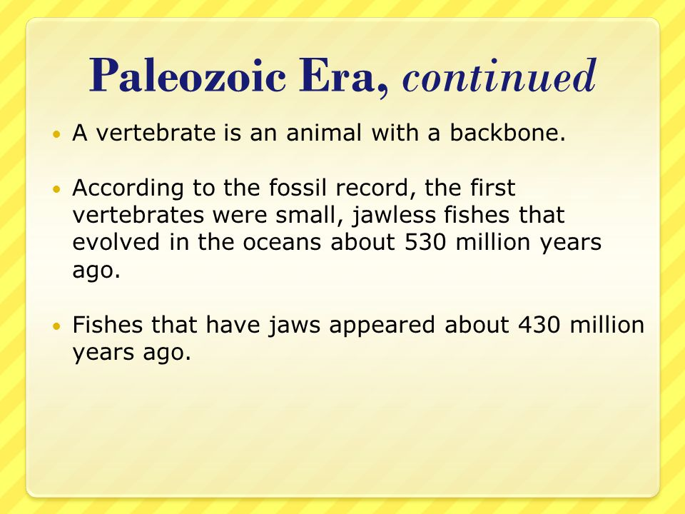Paleozoic Era, continued