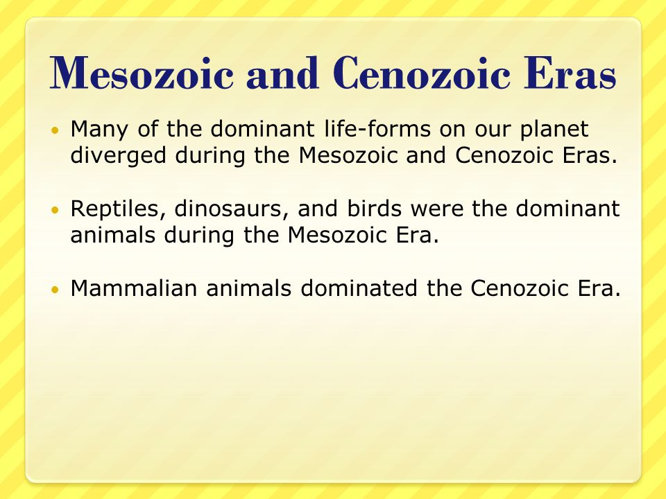 Mesozoic and Cenozoic Eras