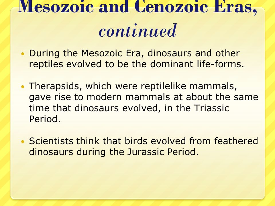 Mesozoic and Cenozoic Eras, continued
