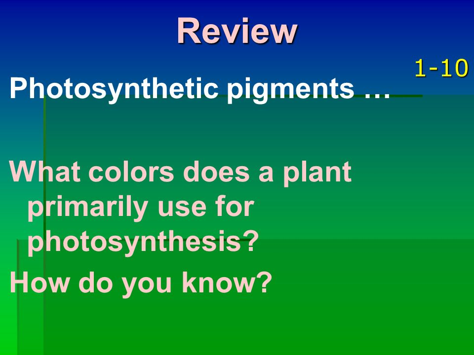 Review Photosynthetic pigments …