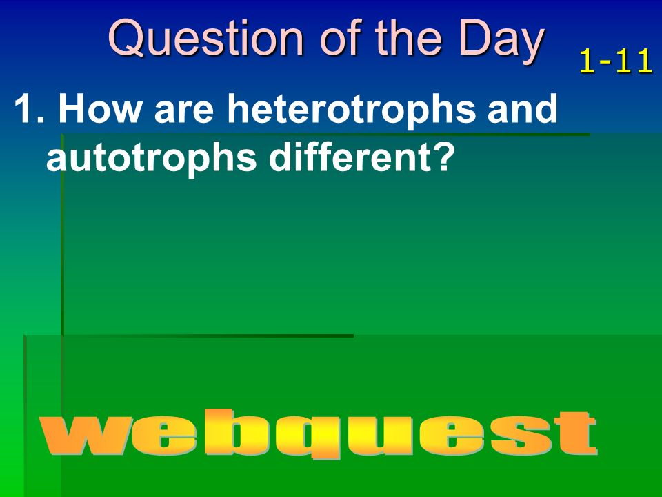 Question of the Day How are heterotrophs and autotrophs different
