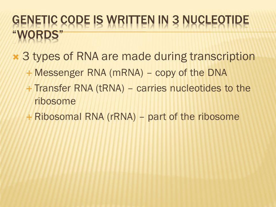 Genetic code is written in 3 nucleotide words