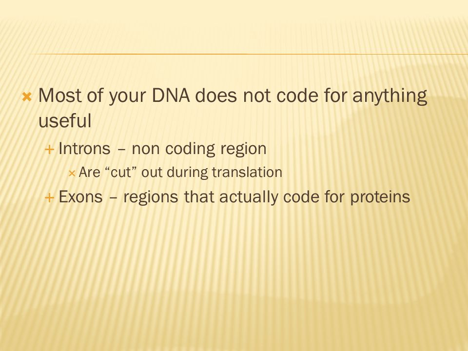 Most of your DNA does not code for anything useful