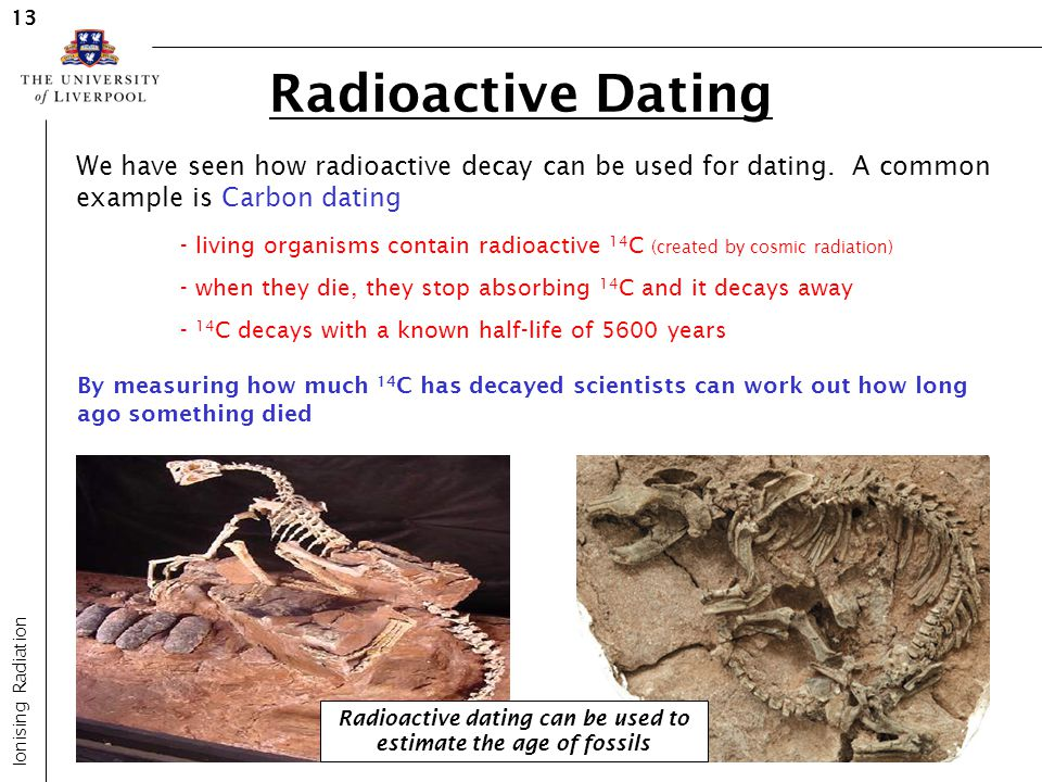 Radioactive dating can be used to estimate the age of fossils