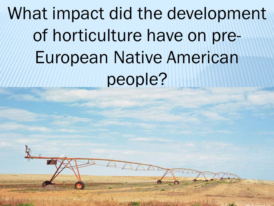 What impact did the development of horticulture have on pre-European Native American people