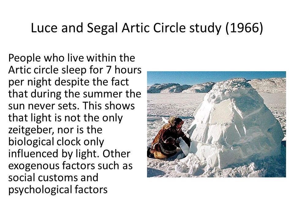 Luce and Segal Artic Circle study (1966)