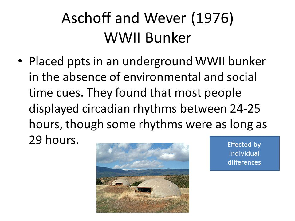 Aschoff and Wever (1976) WWII Bunker