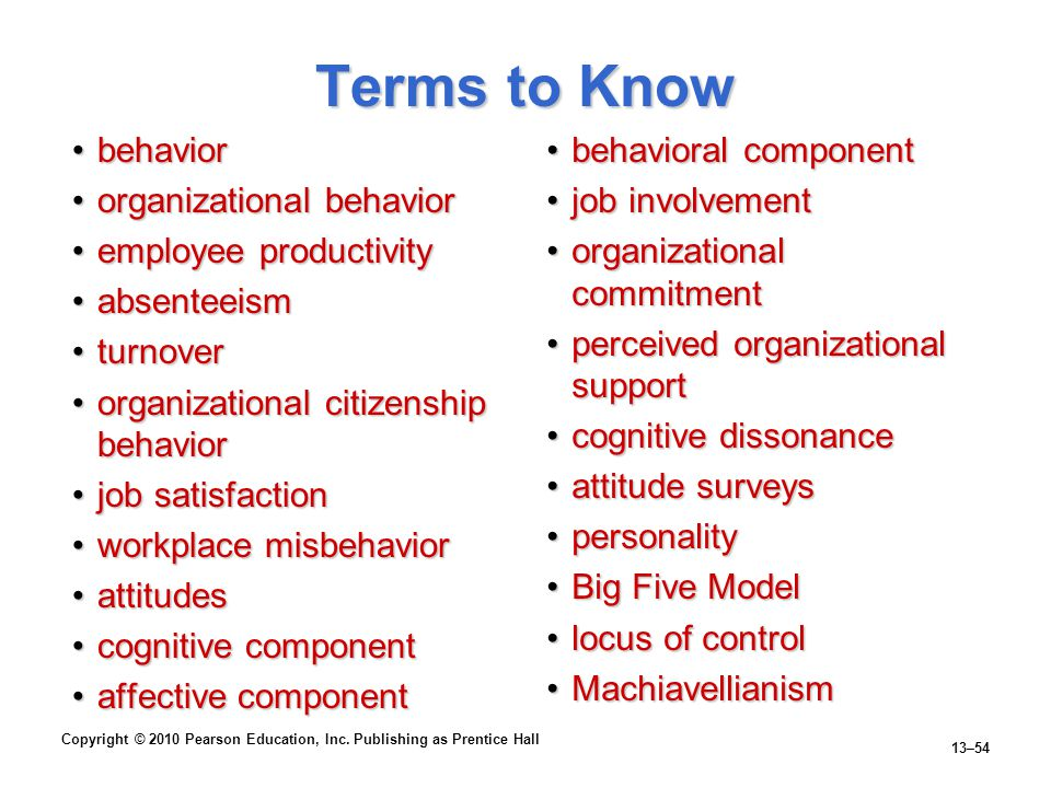 Terms to Know behavior organizational behavior employee productivity