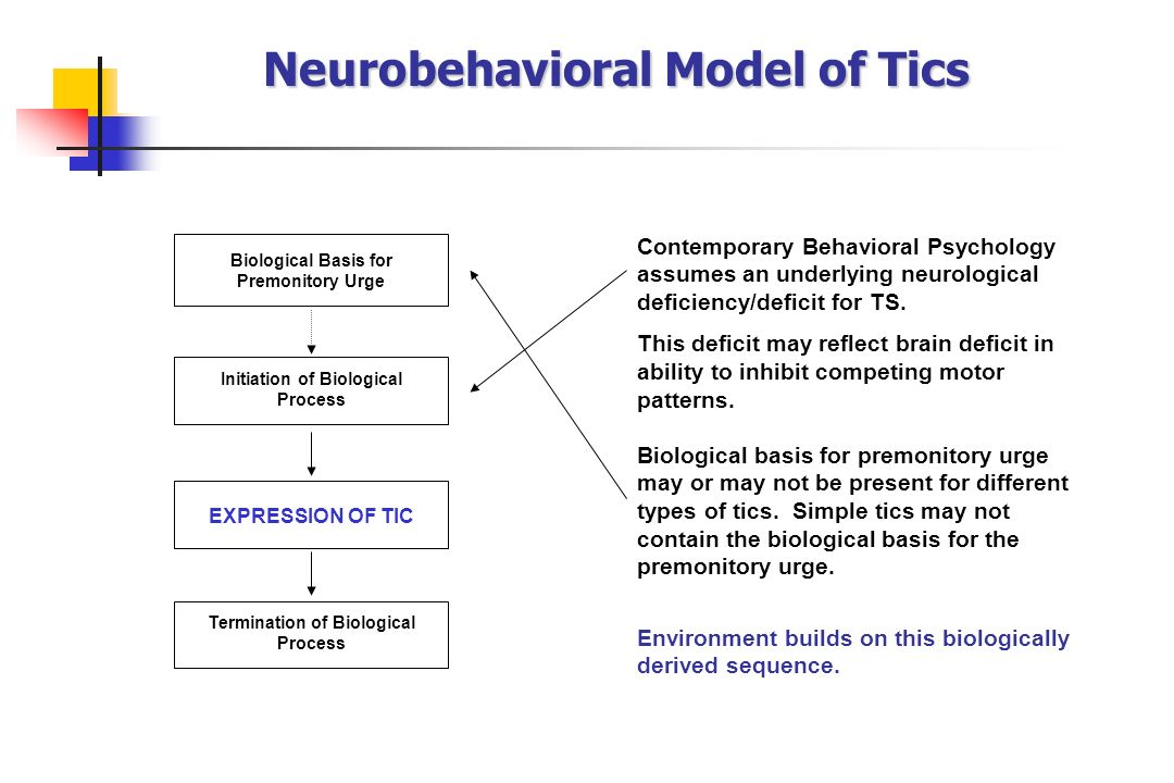 Neurobehavioral Model of Tics