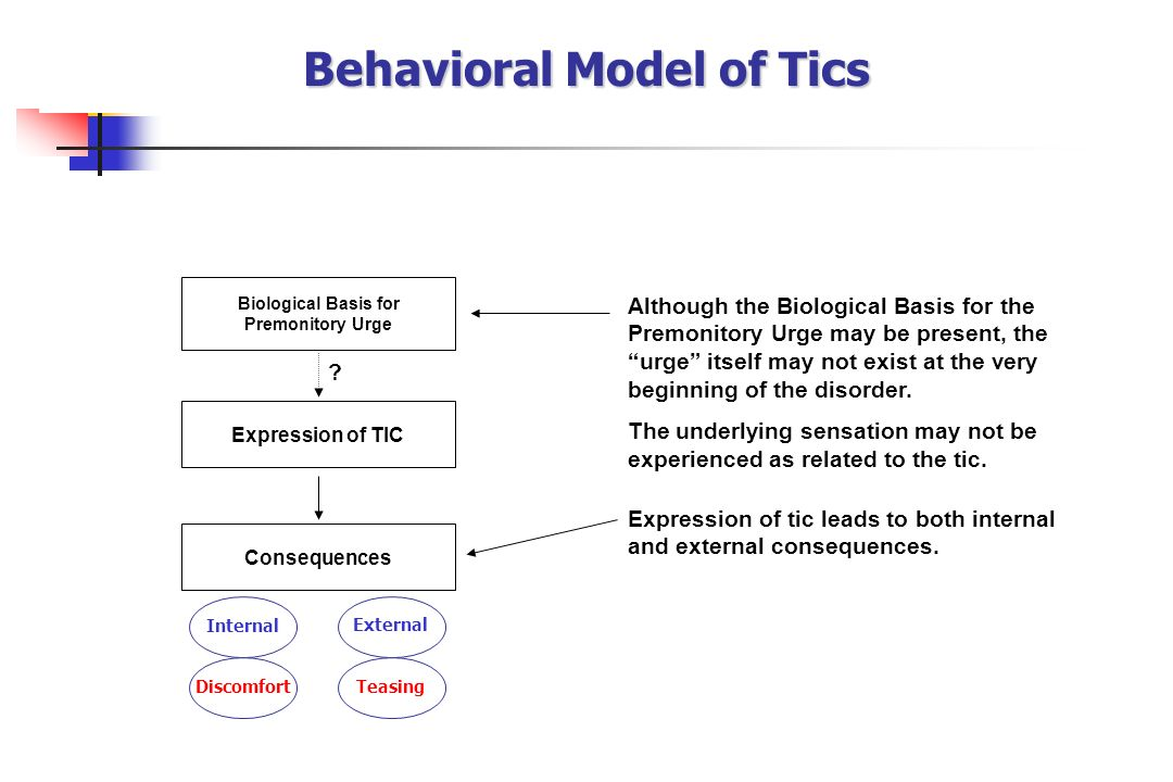 Behavioral Model of Tics