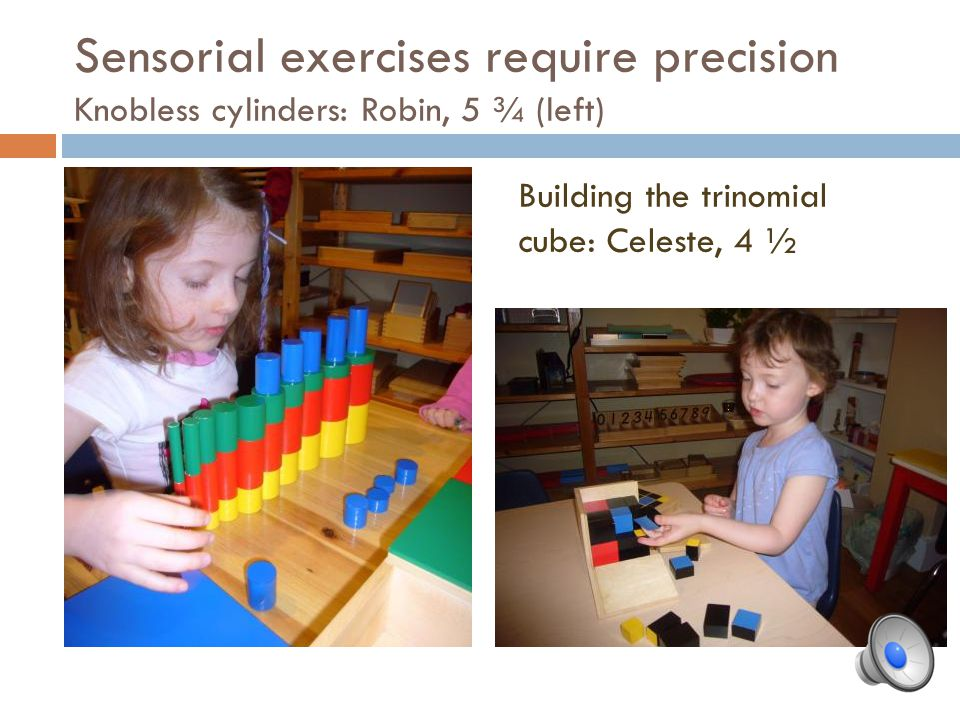 Sensorial exercises require precision Knobless cylinders: Robin, 5 ¾ (left)