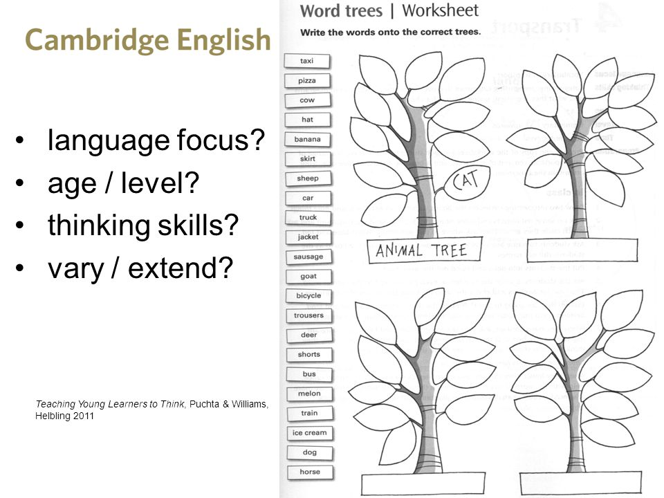 language focus age / level thinking skills vary / extend