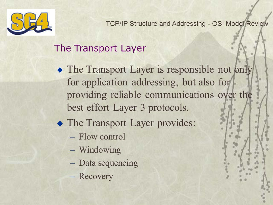 The Transport Layer provides: