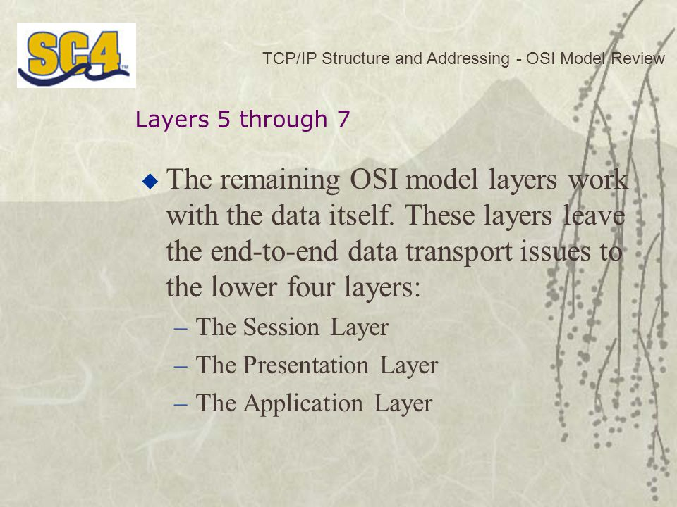 TCP/IP Structure and Addressing - OSI Model Review