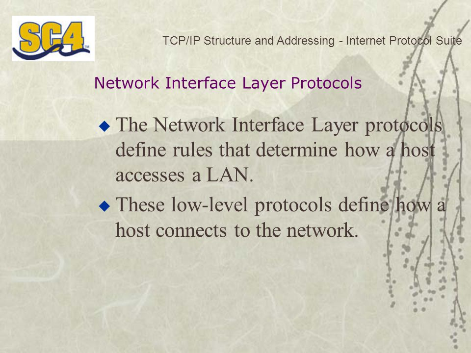 These low-level protocols define how a host connects to the network.