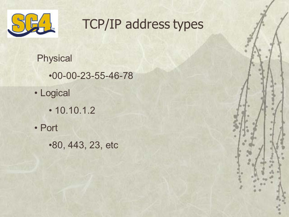 TCP/IP address types Physical 00-00-23-55-46-78 Logical 10.10.1.2 Port