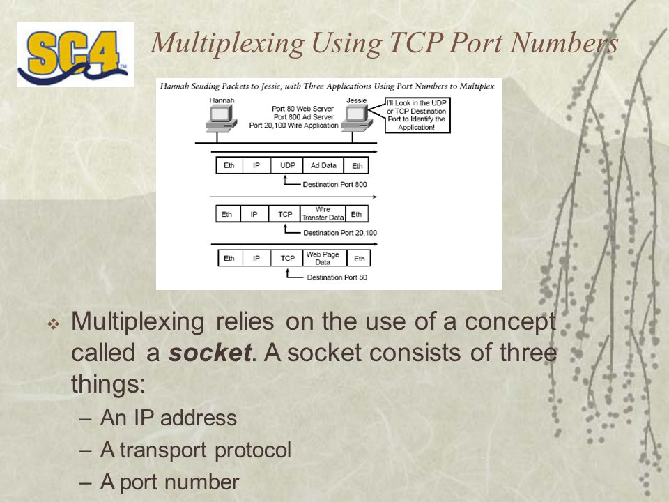 Multiplexing Using TCP Port Numbers