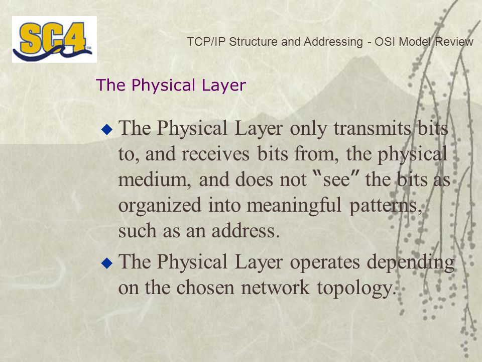 The Physical Layer operates depending on the chosen network topology.
