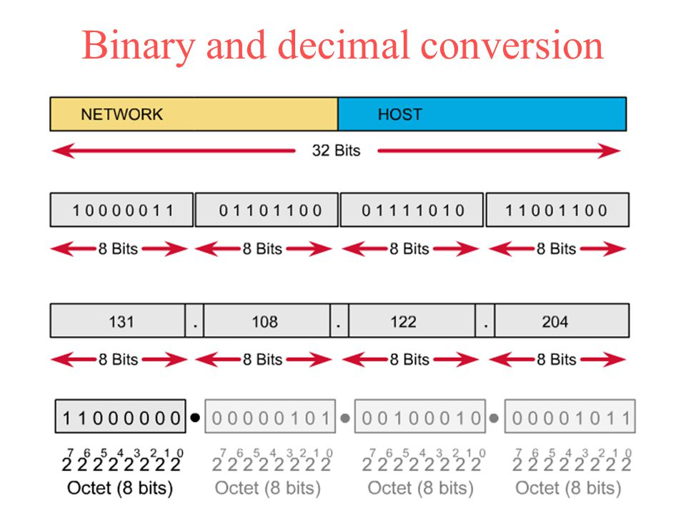 Binary and decimal conversion