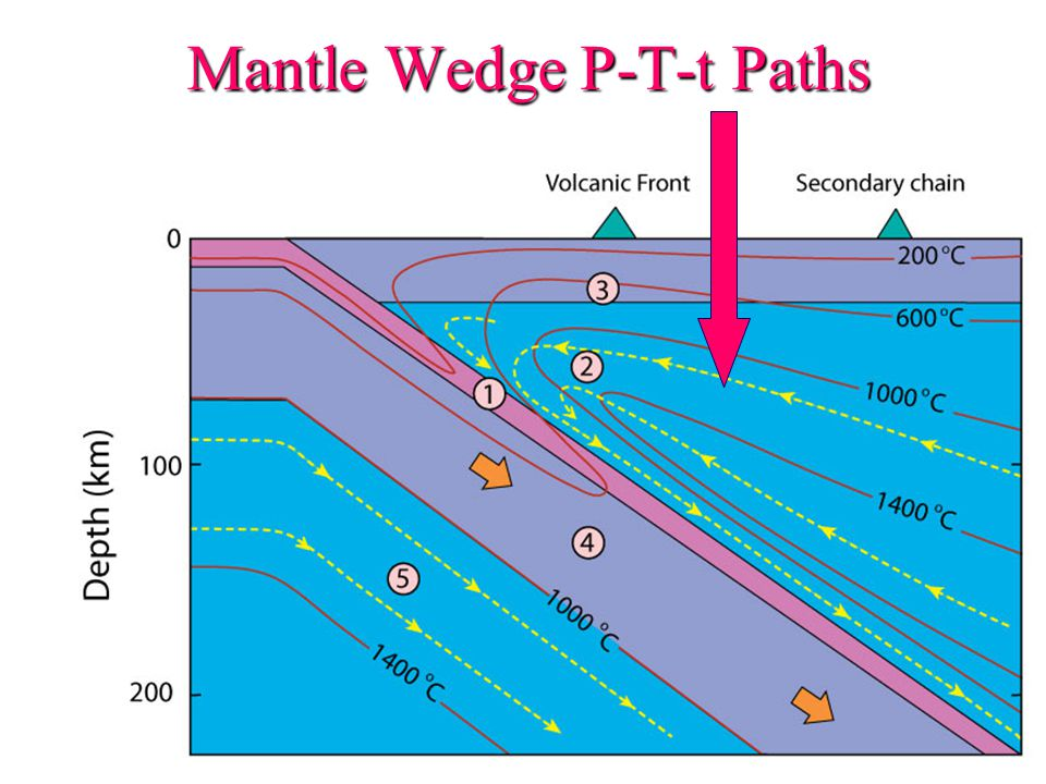 Mantle Wedge P-T-t Paths