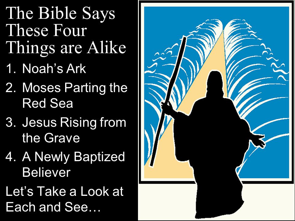 The Bible Says These Four Things are Alike