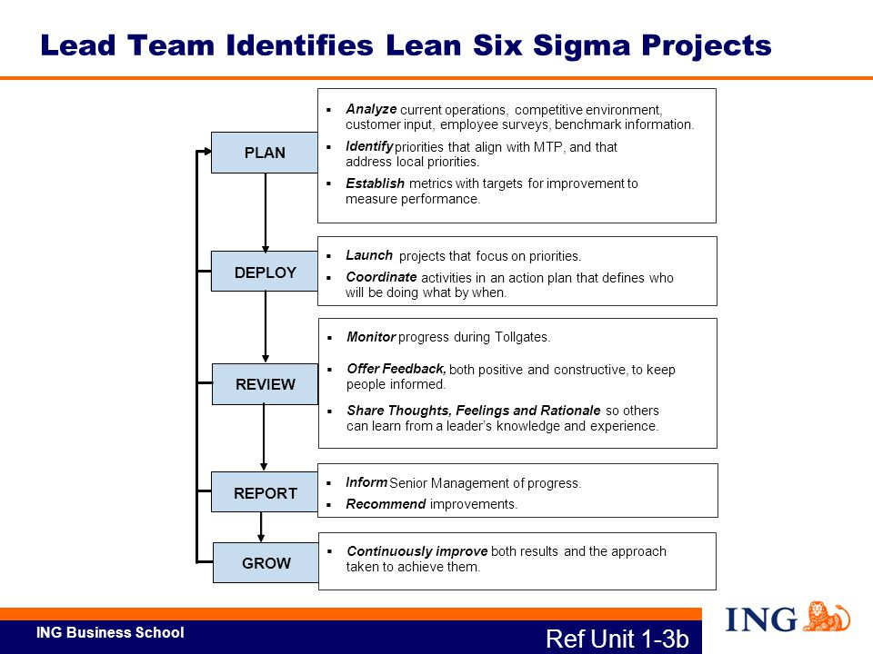 Lean Six Sigma Project Examples Ppt