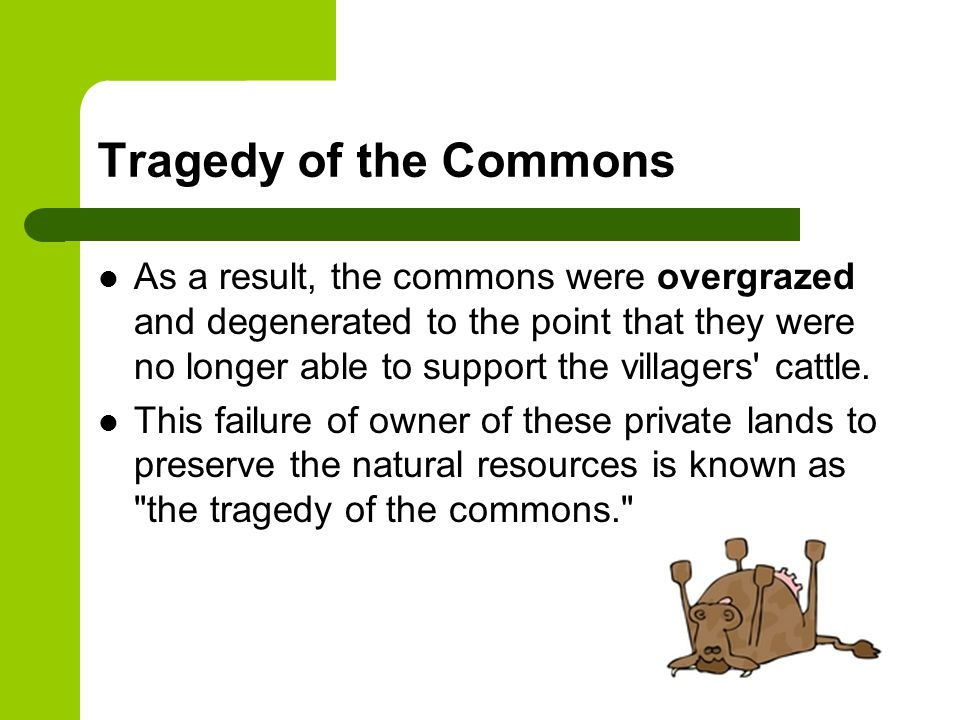 tragedy of the commons meaning
