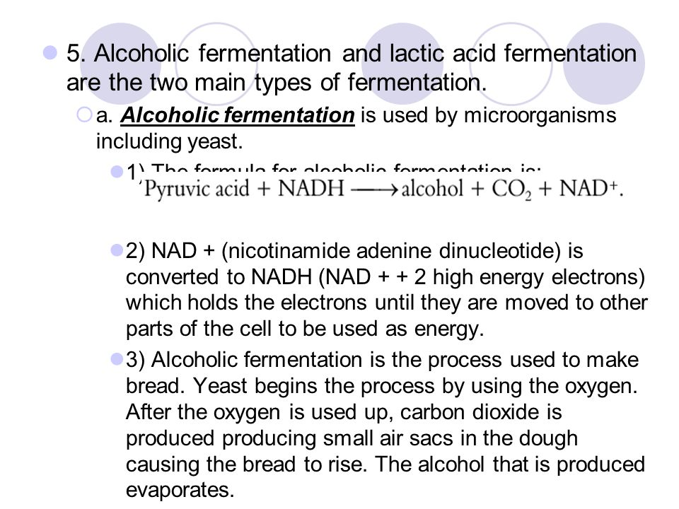 5. Alcoholic fermentation and lactic acid fermentation are the two main types of fermentation.