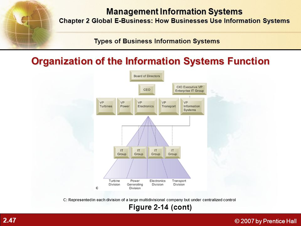 Organization of the Information Systems Function