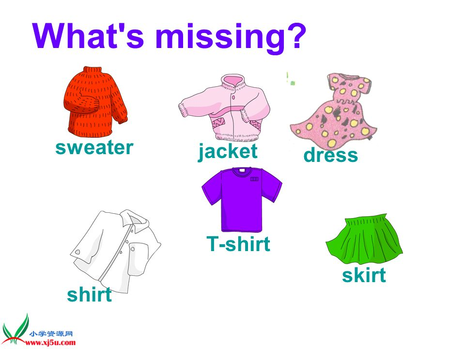 What s missing sweater dress jacket T-shirt shirt skirt