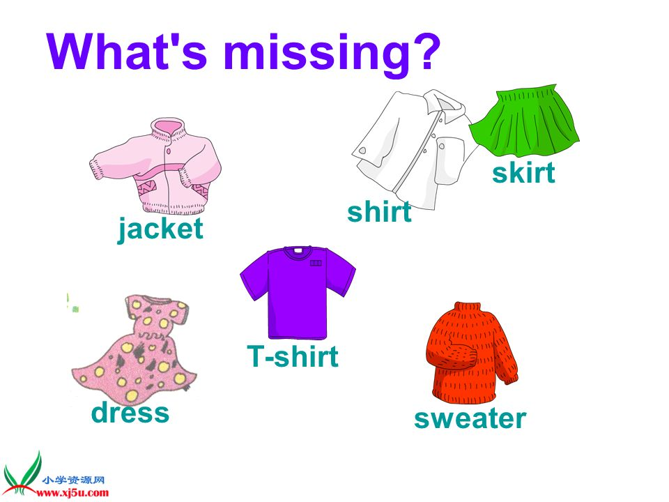 What s missing skirt shirt jacket T-shirt dress sweater