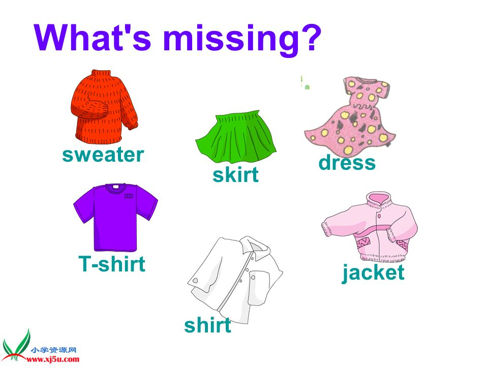 What s missing sweater dress skirt T-shirt jacket shirt