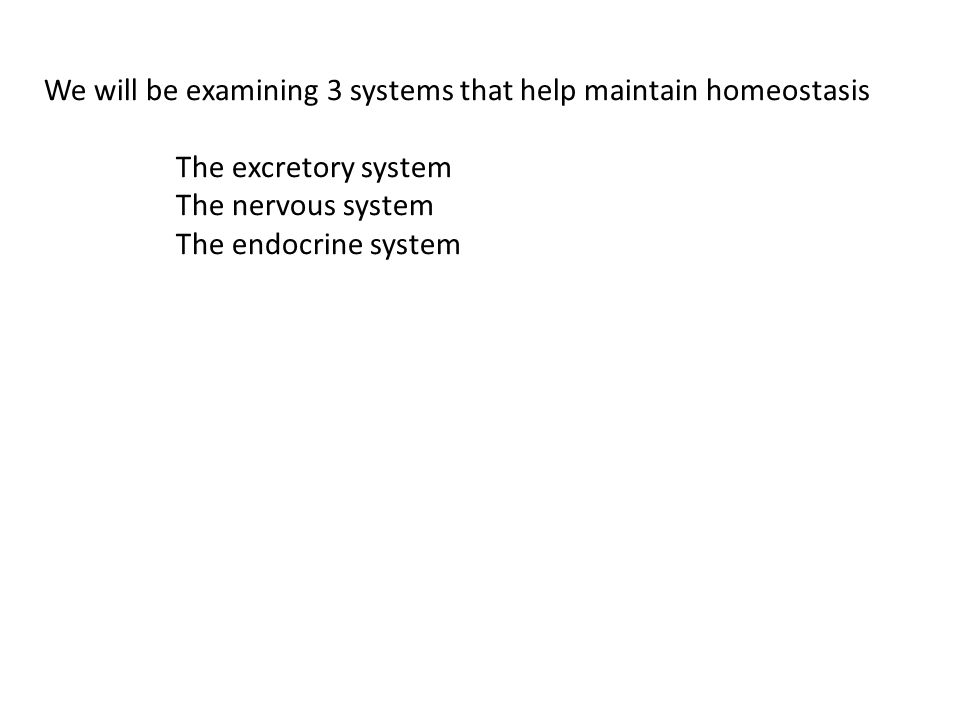 We will be examining 3 systems that help maintain homeostasis