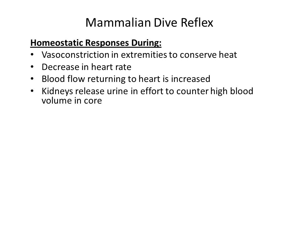 Mammalian Dive Reflex Homeostatic Responses During: