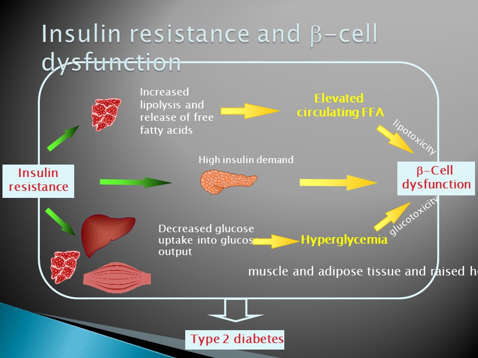 Insulin resistance and -cell dysfunction